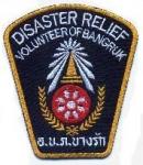 Disaster-Relief V